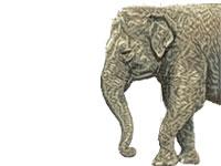Elephant Tube Free